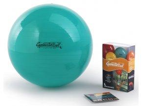 Sada Gymnastik Ball Standard 65 cm + kniha a DVD Janošková