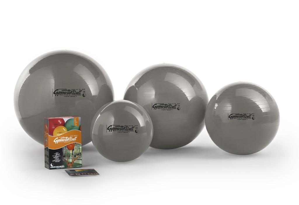 Gymnastik Ball Standard 65 cm barva: stříbrná