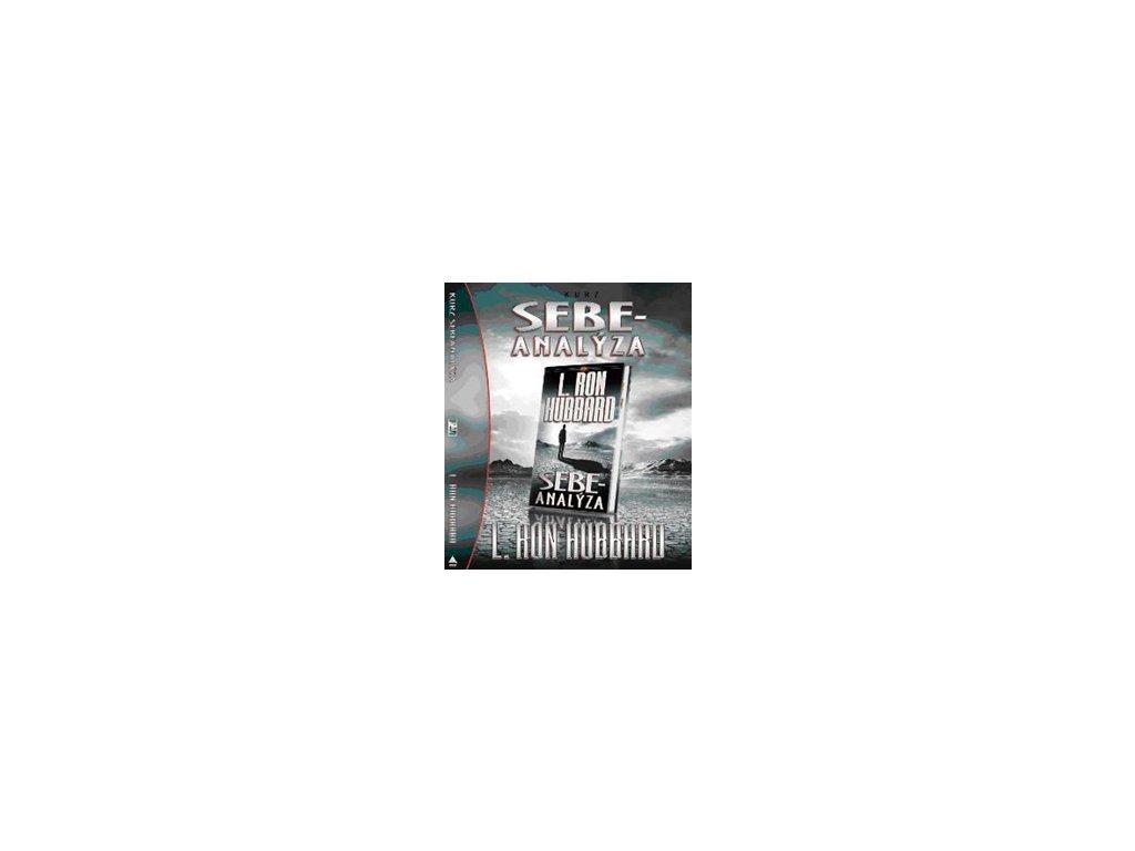 Kurzy k základním knihám pro začátečníky pro mise a orgy Sebeanalýza