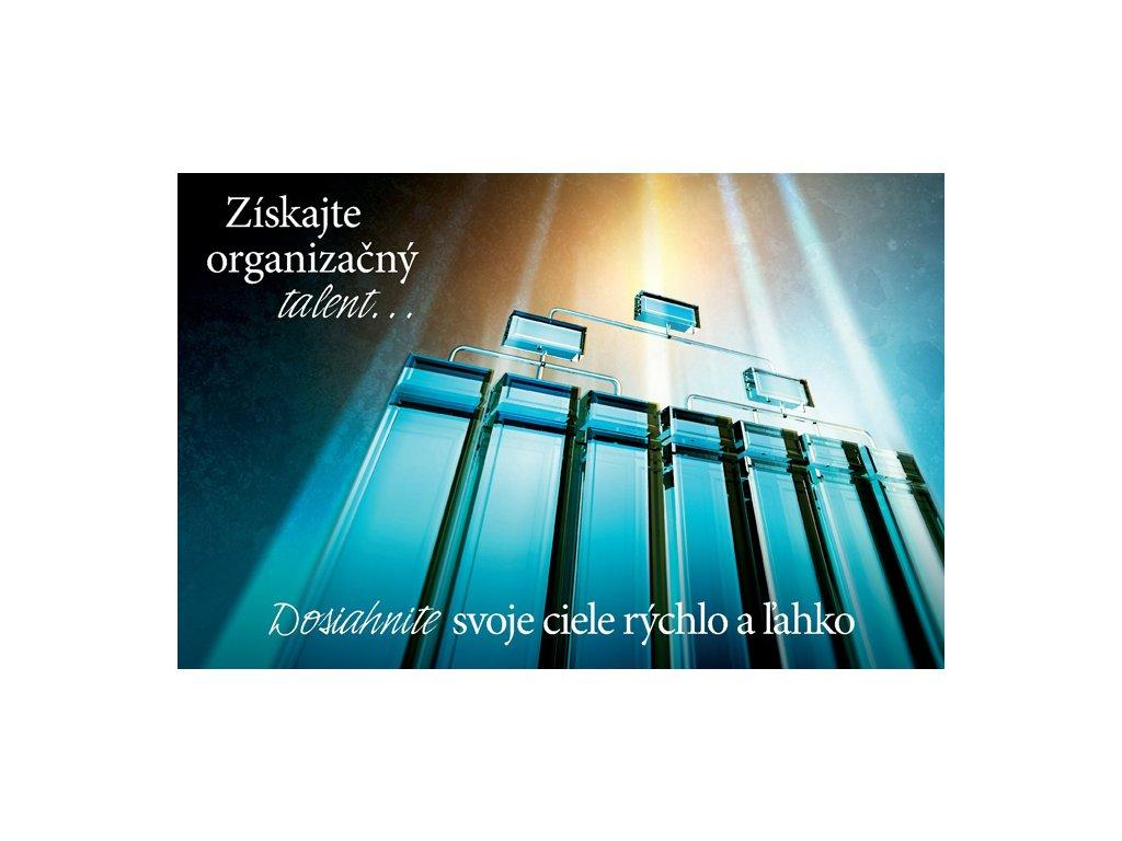 LIC organizování