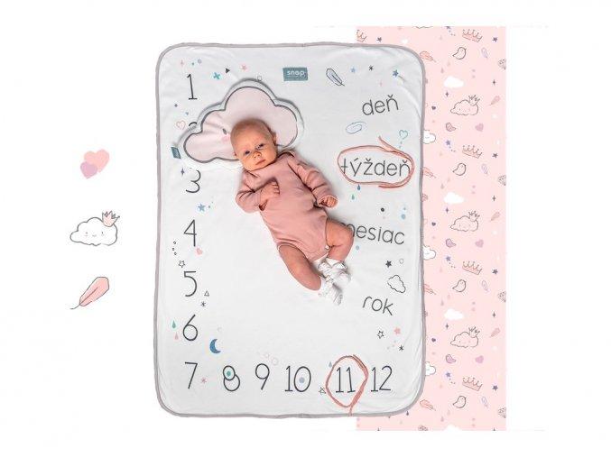206 dusty pink sk