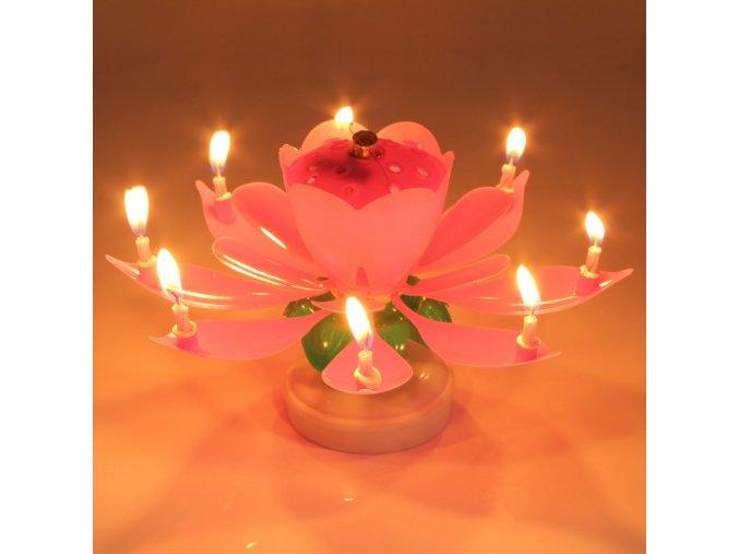 Eletrické hudební svíčky pro narozeninový dort