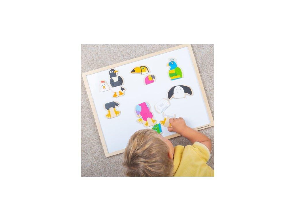 Bigjigs Toys Magnetická ptačí přátelé