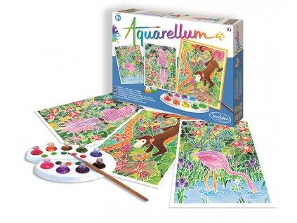 Akvarely - Amazonie