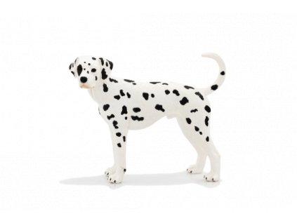 Dalmatin / Mojo Animal Planet