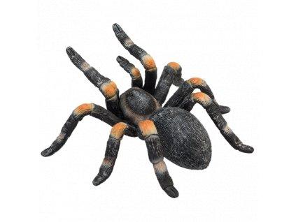 Sklípkan oranžovopruhý / Mojo Animal Planet