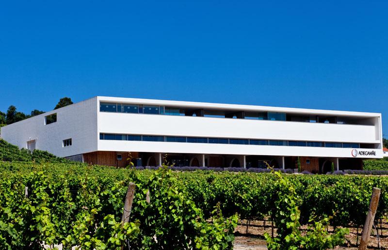 Adega Mae, vína ovlivněná Atlantikem