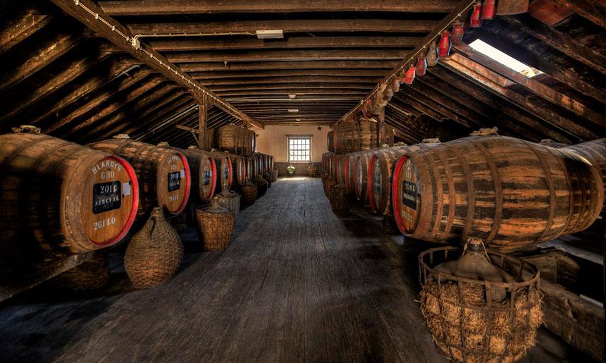 Historie a současnost výroby vína na Madeiře