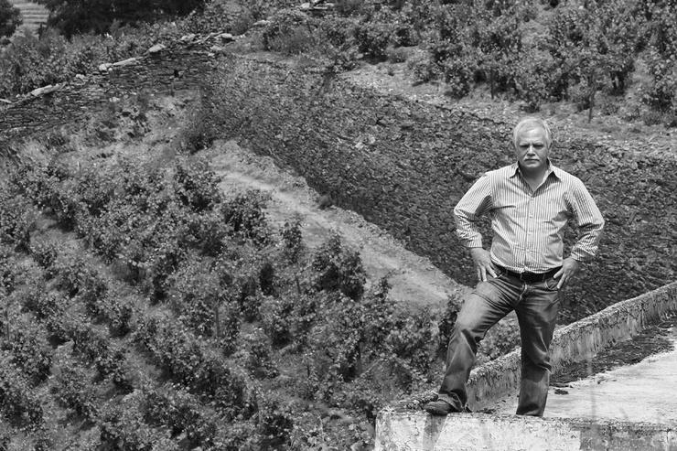 Průkopníci výroby vína v Douru - vinařství Alves de Sousa