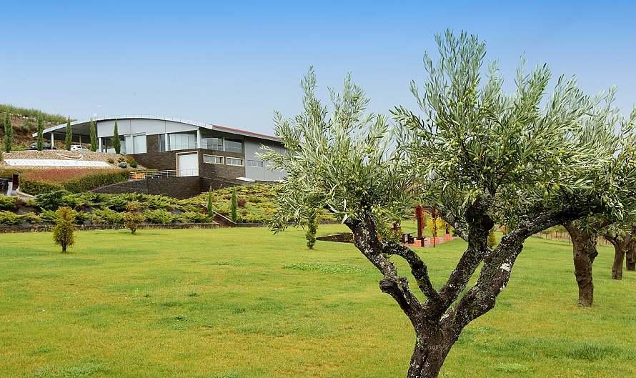 Quinta Vale d'Aldeia, vycházející hvězda oblasti Douro Superior