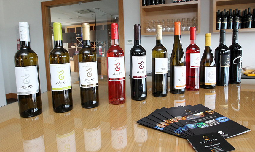 Umíte si vybrat vhodné víno k těstovinám?