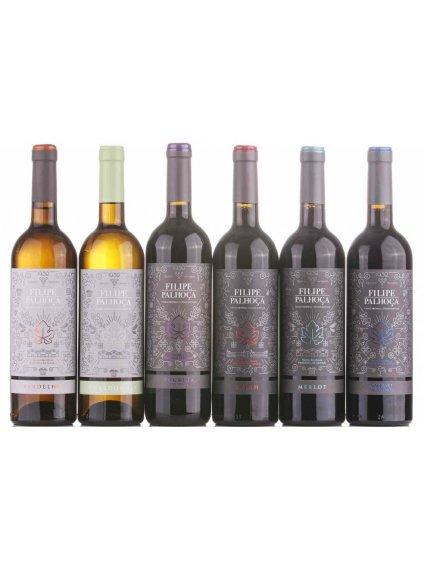 sada odrůdových vín Filipe Palhoca ze Setúbalu