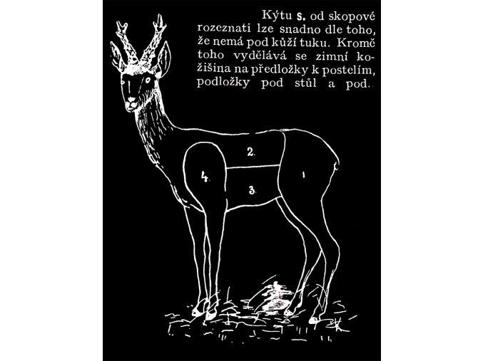 Srnčí kýta - tričko s potiskem (Pánské/Dámské Dámské černé, Velikost XXL)