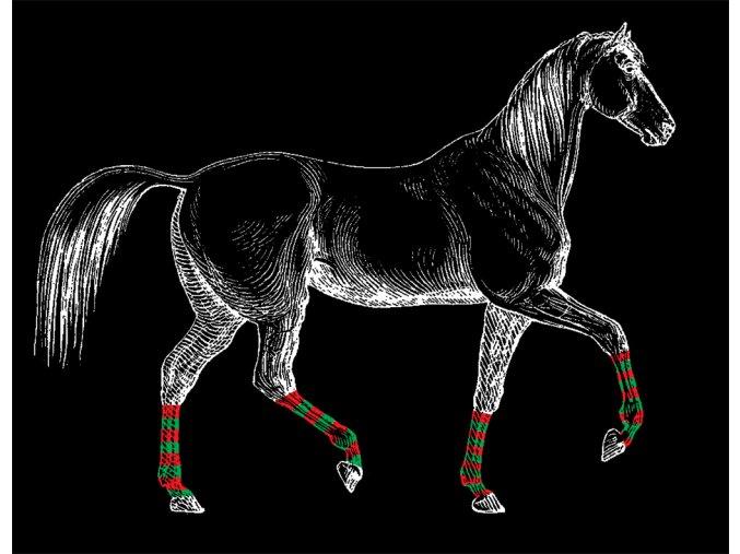 kůň v podkolenkách černé triko
