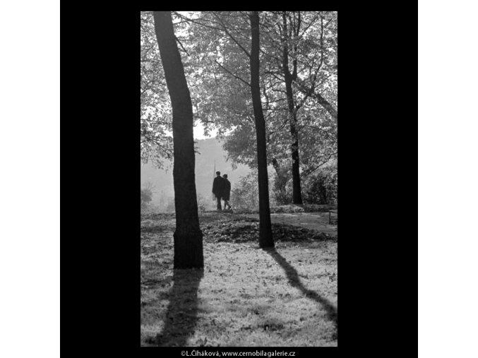 Dvojice mezi stromy (5670), žánry - Praha 1967 říjen, černobílý obraz, stará fotografie, prodej