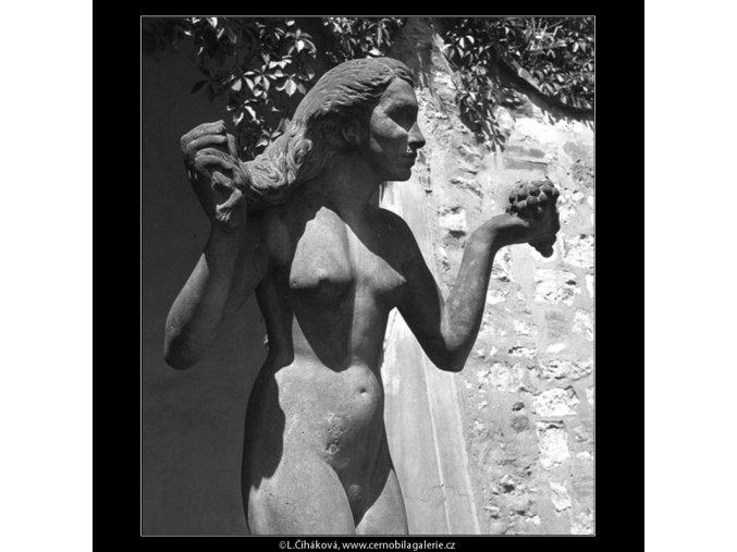 Dar nebes a země (166-2), Praha 1959 červen, černobílý obraz, stará fotografie, prodej