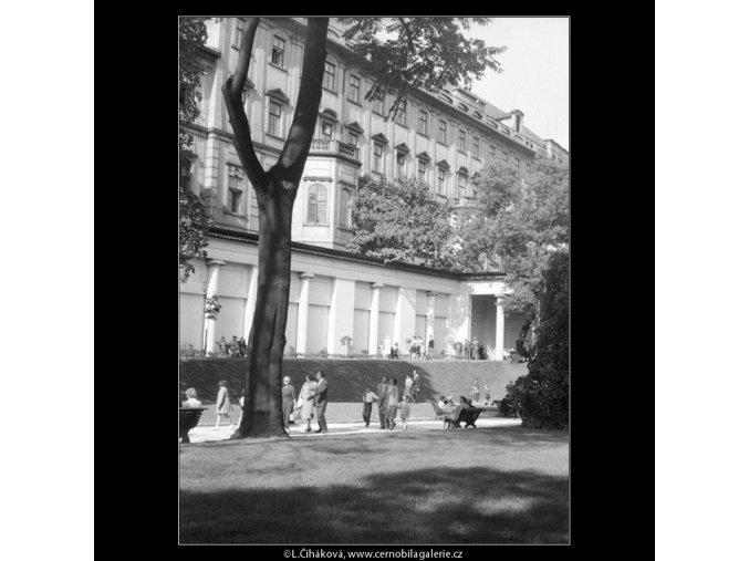 V jižních zahradách Hradu (266-2), Praha 1959 , černobílý obraz, stará fotografie, prodej