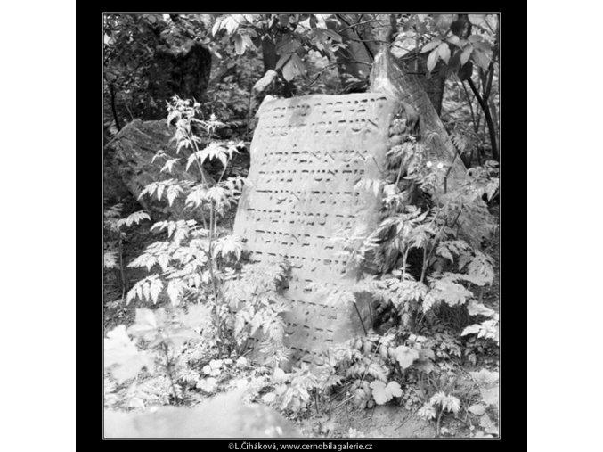 Ze židovského hřbitova (608-9), Praha 1960 květen, černobílý obraz, stará fotografie, prodej