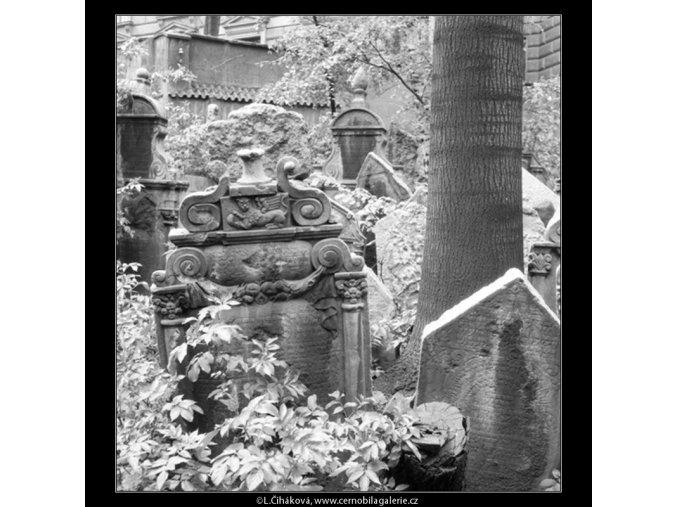Ze židovského hřbitova (608-13), Praha 1960 květen, černobílý obraz, stará fotografie, prodej