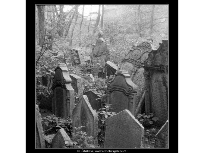 Ze židovského hřbitova (608-15), Praha 1960 květen, černobílý obraz, stará fotografie, prodej
