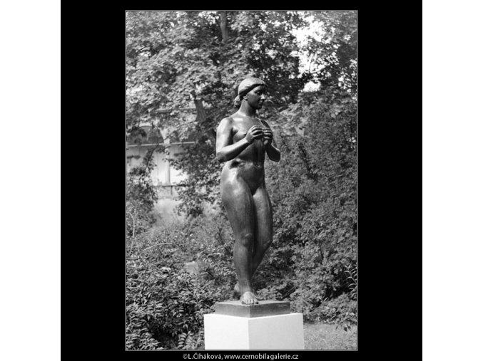 Dívka s jablkem (642-6), Praha 1960 červen, černobílý obraz, stará fotografie, prodej