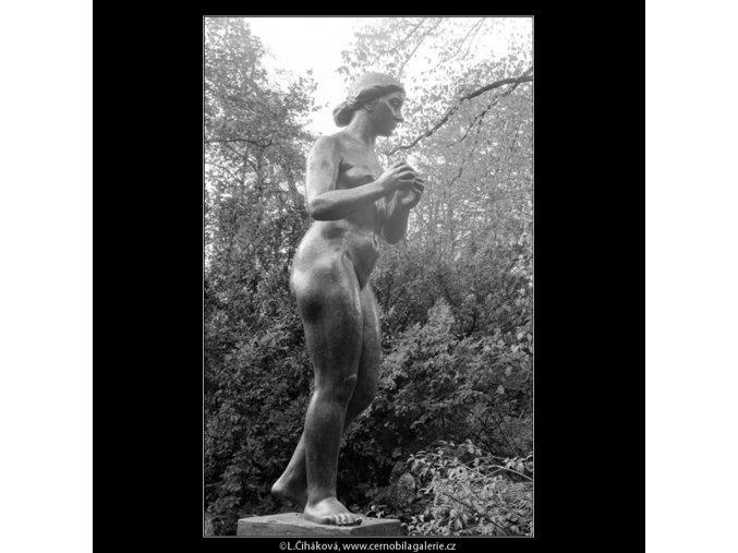 Dívka s jablkem (642-7), Praha 1960 červen, černobílý obraz, stará fotografie, prodej
