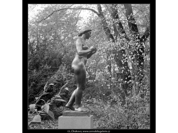 Dívka s jablkem (642-8), Praha 1960 červen, černobílý obraz, stará fotografie, prodej