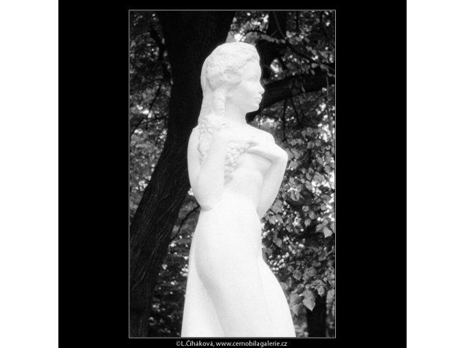 Réva (664-1), Praha 1960 červen, černobílý obraz, stará fotografie, prodej