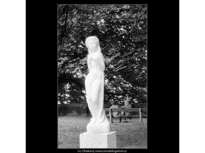 Réva (664-2), Praha 1960 červen, černobílý obraz, stará fotografie, prodej