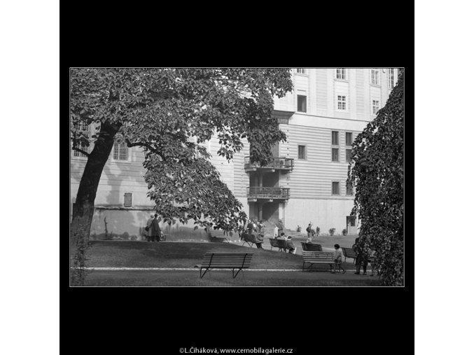 V jižních zahradách (982-1), Praha 1960 podzim, černobílý obraz, stará fotografie, prodej