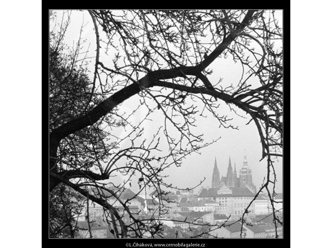 Pohled na Hrad (964-4), Praha 1960 listopad, černobílý obraz, stará fotografie, prodej