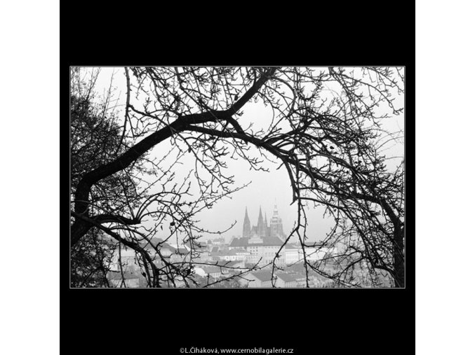 Pohled na Hrad (964-1), Praha 1960 listopad, černobílý obraz, stará fotografie, prodej