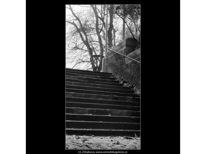 Podzim na schodech (949), Praha 1960 říjen, černobílý obraz, stará fotografie, prodej