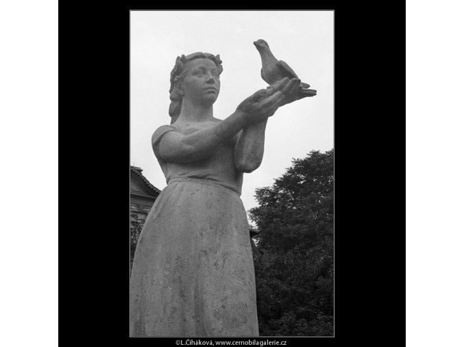 Dívka s holubicí (665-2), Praha 1960 červen, černobílý obraz, stará fotografie, prodej