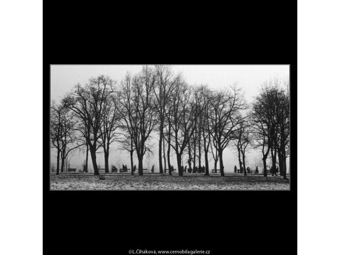 V Letenských sadech (1058-1), žánry - Praha 1961 únor, černobílý obraz, stará fotografie, prodej