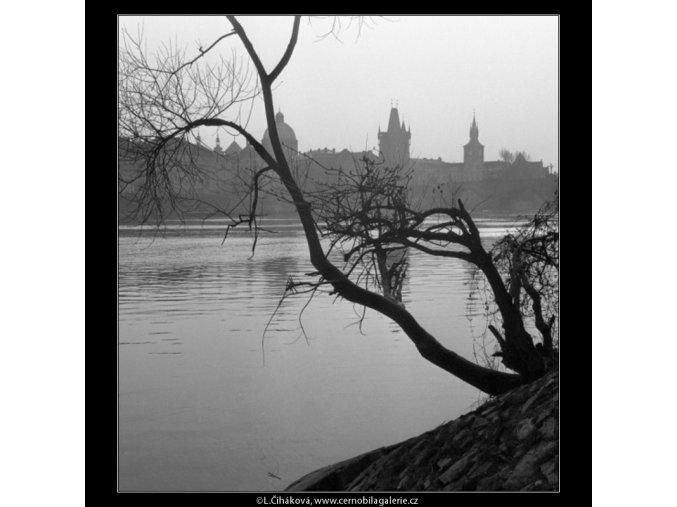 Věže a most skrz strom (1088-8), Praha 1961 březen, černobílý obraz, stará fotografie, prodej