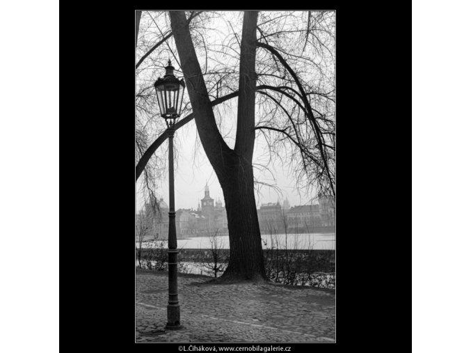 Na Kampě (1132), Praha 1961 duben, černobílý obraz, stará fotografie, prodej