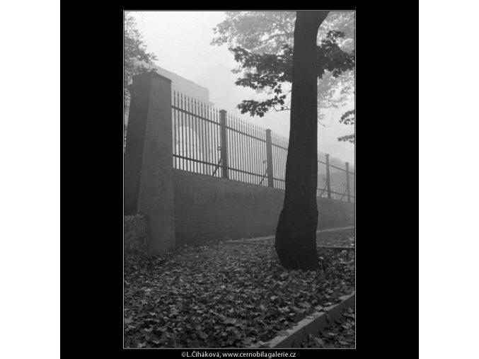 Z Belvederu (1891-1), Praha 1962 říjen, černobílý obraz, stará fotografie, prodej