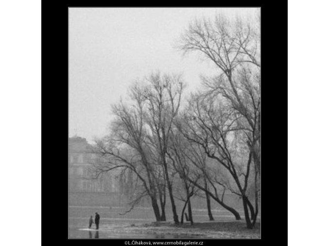 Špička Střeleckého ostrova (1936), žánry - Praha 1962 prosinec, černobílý obraz, stará fotografie, prodej