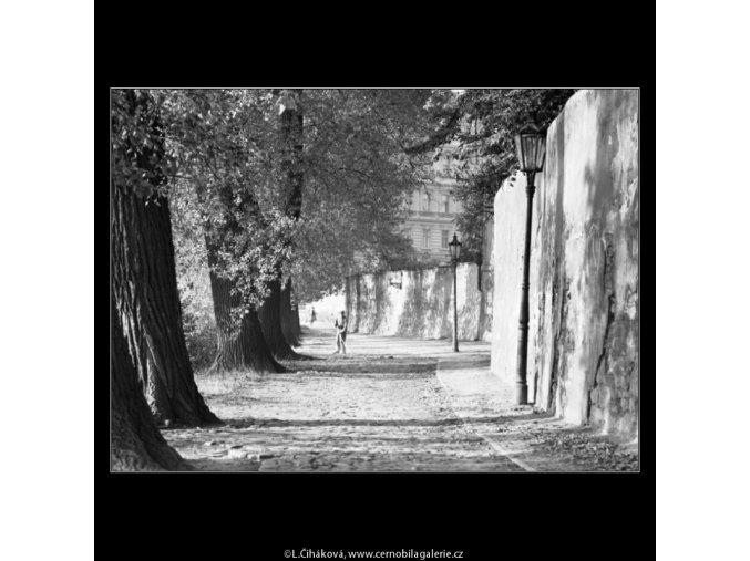Na Kampě (1814), Praha 1962 září, černobílý obraz, stará fotografie, prodej