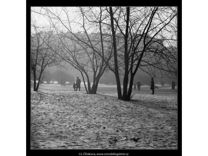 Stromy a lidé (2016-1), žánry - Praha 1963 leden, černobílý obraz, stará fotografie, prodej