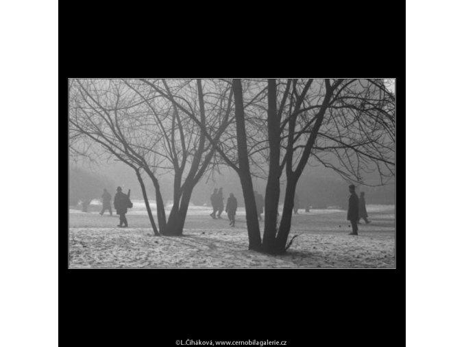 Stromy a lidé (2016-2), žánry - Praha 1963 leden, černobílý obraz, stará fotografie, prodej