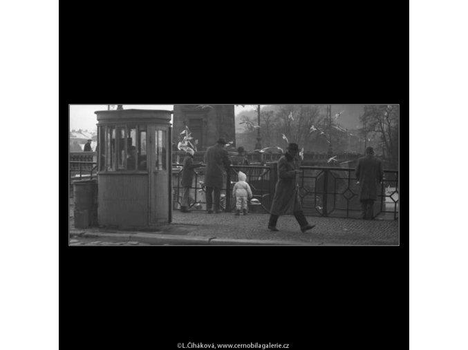 Krmení racků (2073-2), žánry - Praha 1963 duben, černobílý obraz, stará fotografie, prodej