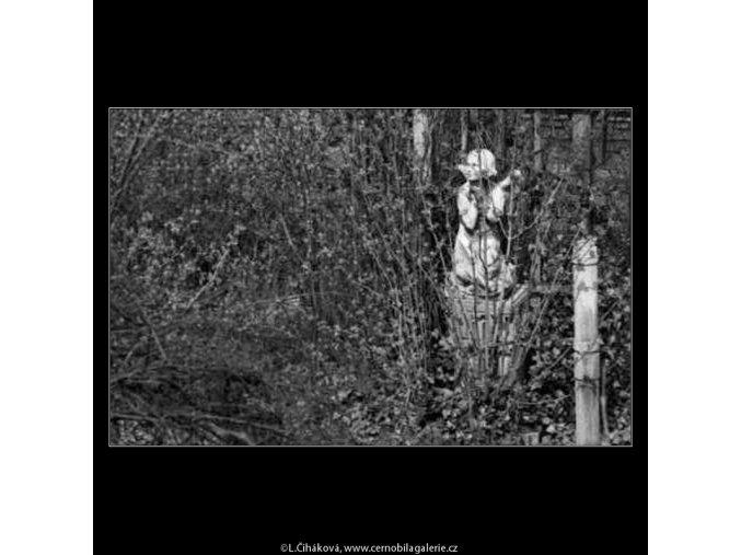 Zapomenutá socha (2116), žánry - Praha 1963 červen, černobílý obraz, stará fotografie, prodej