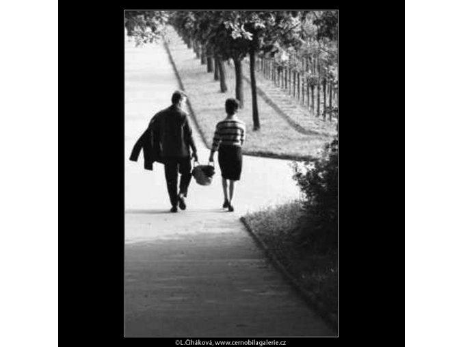 Dvojice na cestě v aleji (2217), žánry - Praha 1963 červen, černobílý obraz, stará fotografie, prodej