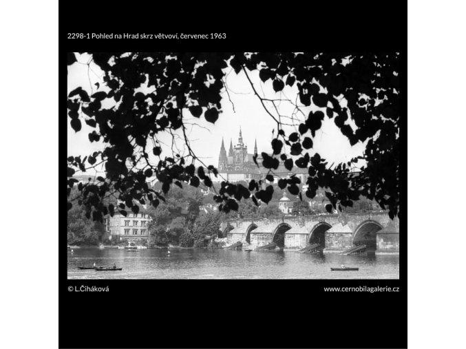 Pohled na Hrad skrz větvoví (2298-1), Praha 1963 červenec, černobílý obraz, stará fotografie, prodej