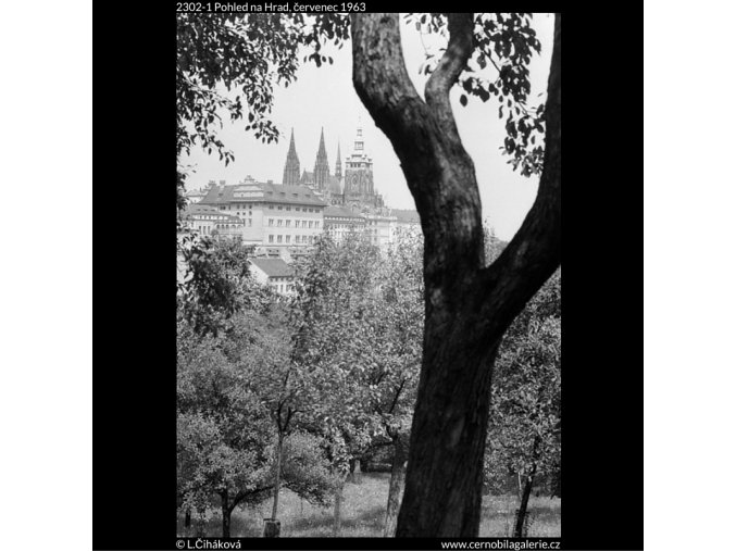 Pohled na Hrad (2302-1), Praha 1963 červenec, černobílý obraz, stará fotografie, prodej