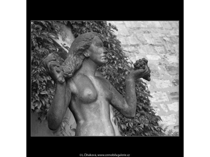 Dar nebes a země (2430-1), Praha 1963 září, černobílý obraz, stará fotografie, prodej