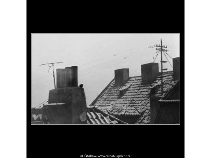 Polozasněžené střechy (2616), žánry - Praha 1963 prosinec, černobílý obraz, stará fotografie, prodej