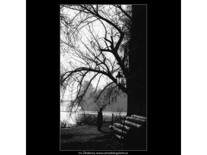 Zákoutí na Kampě (2673), žánry - Praha 1964 leden, černobílý obraz, stará fotografie, prodej